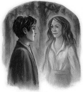 dh.c34--the-forest-again