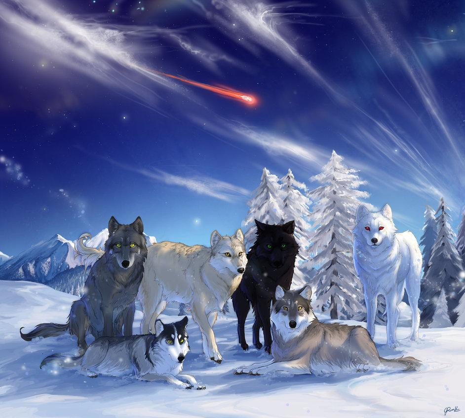 the_direwolves_of_westeros_by_jessyr-d5f3au7