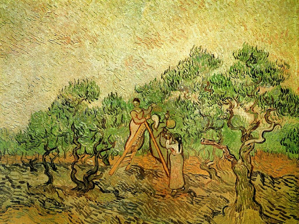 vincent-van-gogh-olive-picking