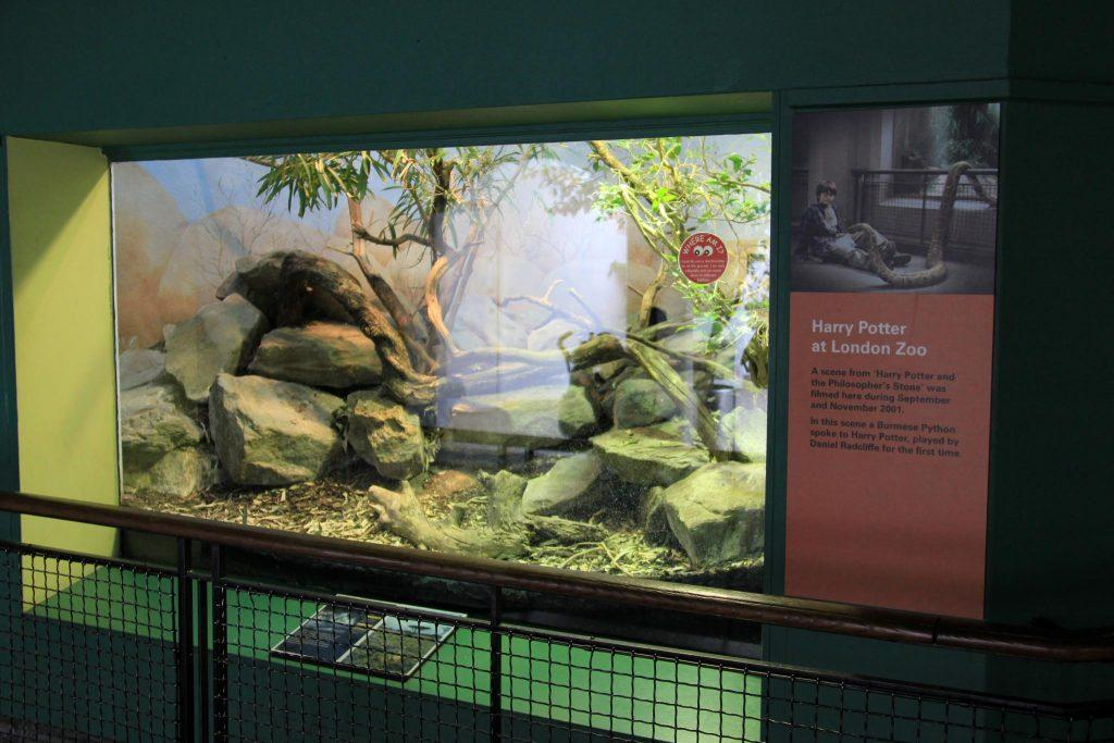London_Zoo_Reptile_House-8727029288
